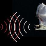 Как работает ультразвуковой дальномер