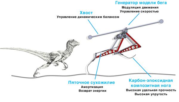 Двуногий робот-бегун Raptor, созданный корейскими учеными из KAIST