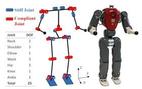 Кинематическая схема антропоморфного робота